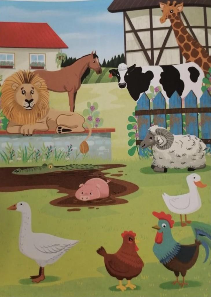 zwierzęta wiejskie